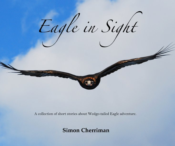 View Eagle in Sight by Simon Cherriman