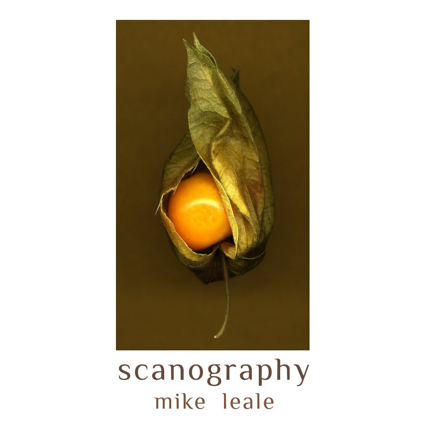 View Scanography by Mike Leale