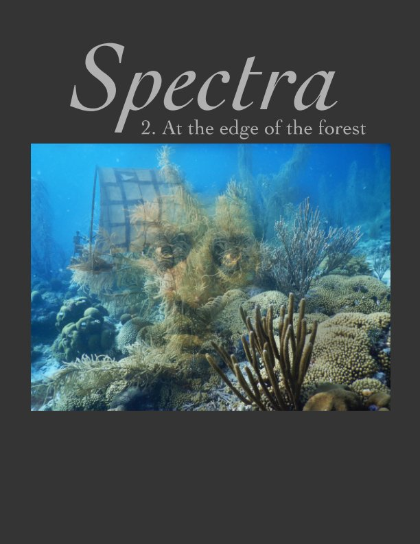 View Spectra 2 by edited by Raman Rao