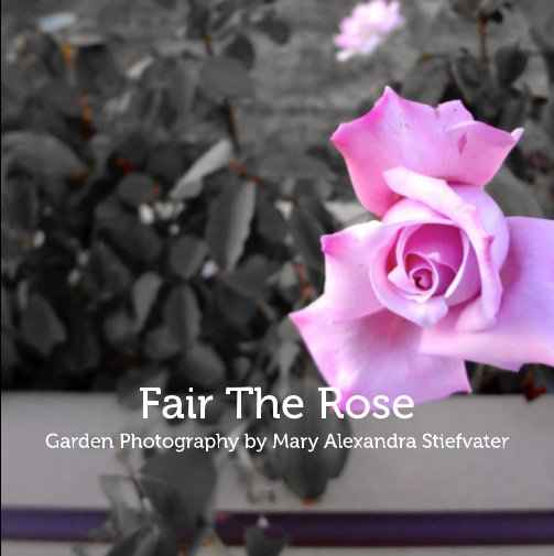 View Fair The Rose by Mary Alexandra Stiefvater