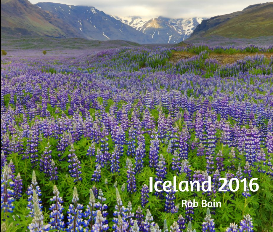 View Iceland 2016 by Rob Bain
