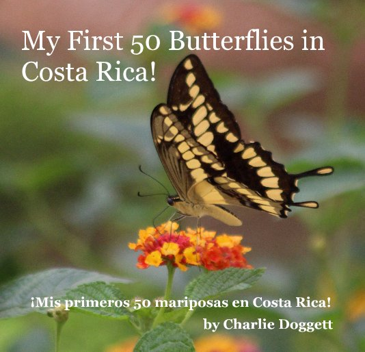View My First 50 Butterflies in Costa Rica! by Charlie Doggett