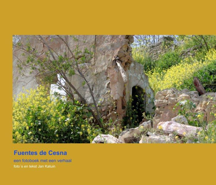 View Fuentes de Cesna by Jan Katuin
