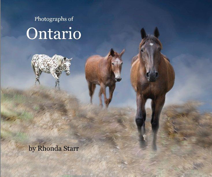 View Ontario by Rhonda Starr
