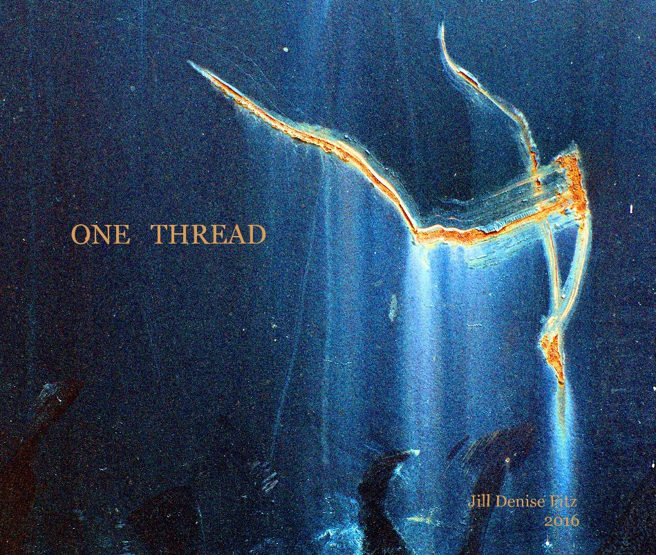 View ONE THREAD by Jill Denise Fitz 2016