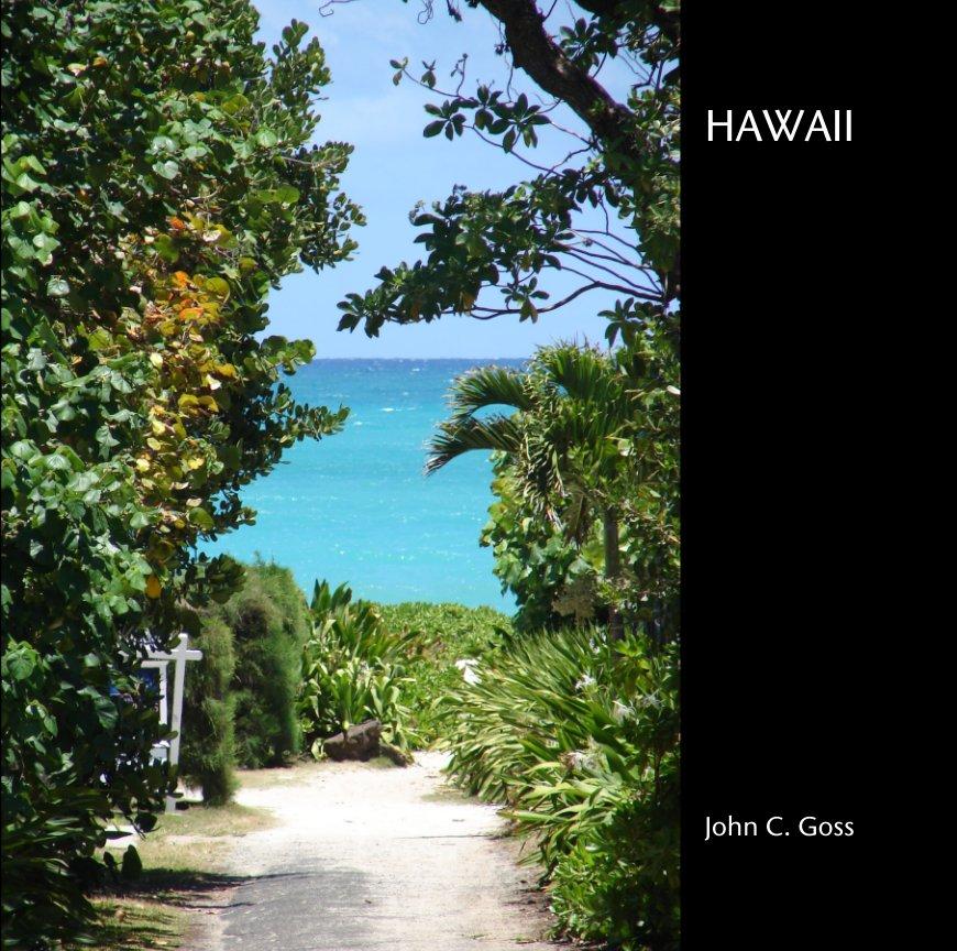 View HAWAII by John C. Goss