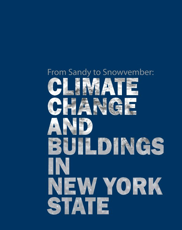 View From Sandy to Snowvember by Michael St. John, Nicholas Rajkovich, Martha Bohm