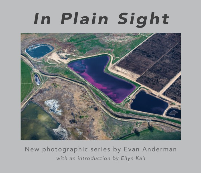 View In Plain Sight by Evan Anderman