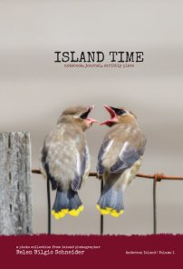 Island Time - Volume 1 (Hardcover) book cover