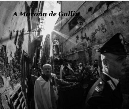 A Maronn de Gallin book cover