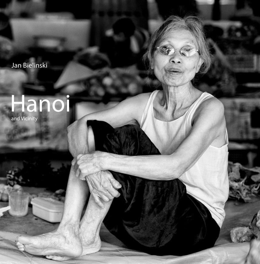 View Hanoi and Vicinity by Jan Bielinski