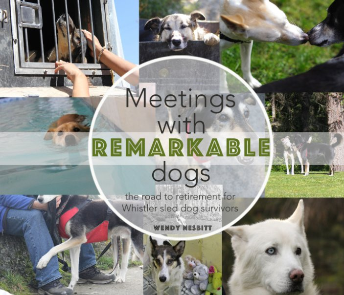 View Meetings with Remarkable Dogs by wendy nesbitt
