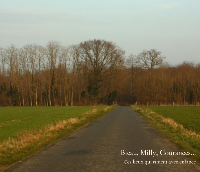 View Bleau, Milly, Courances by Marianne Touchard-Heyman