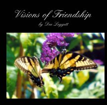Visions of Friendship book cover