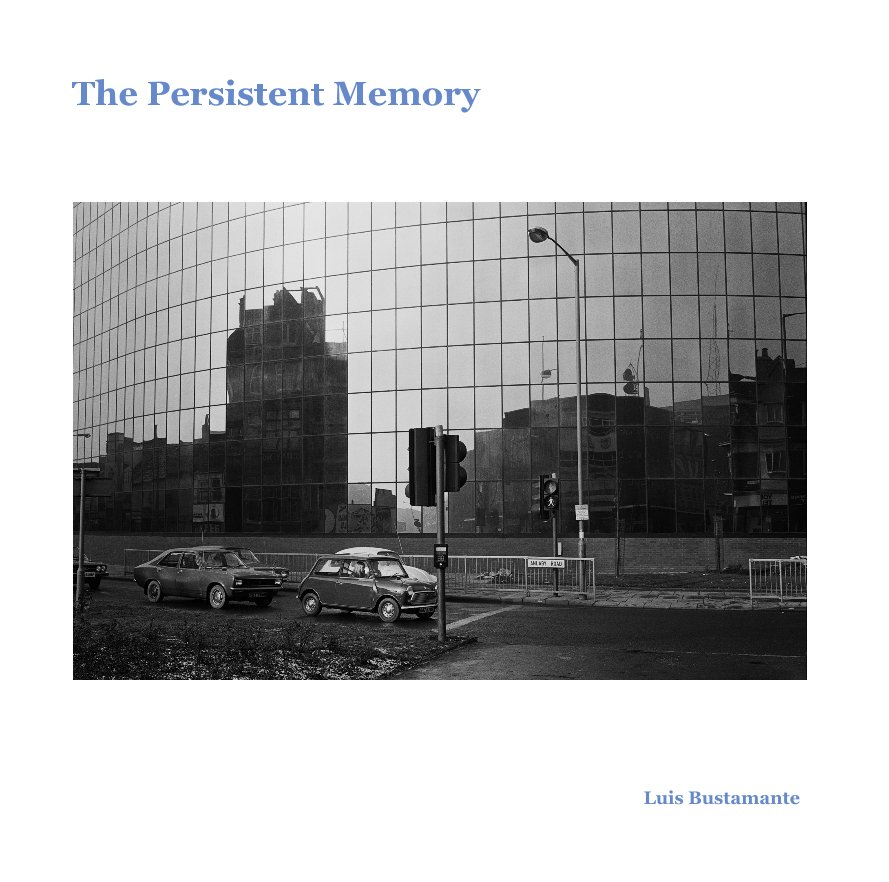 View The Persistent Memory by Luis Bustamante