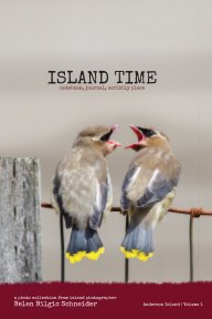 Island Time - Volume 1 book cover