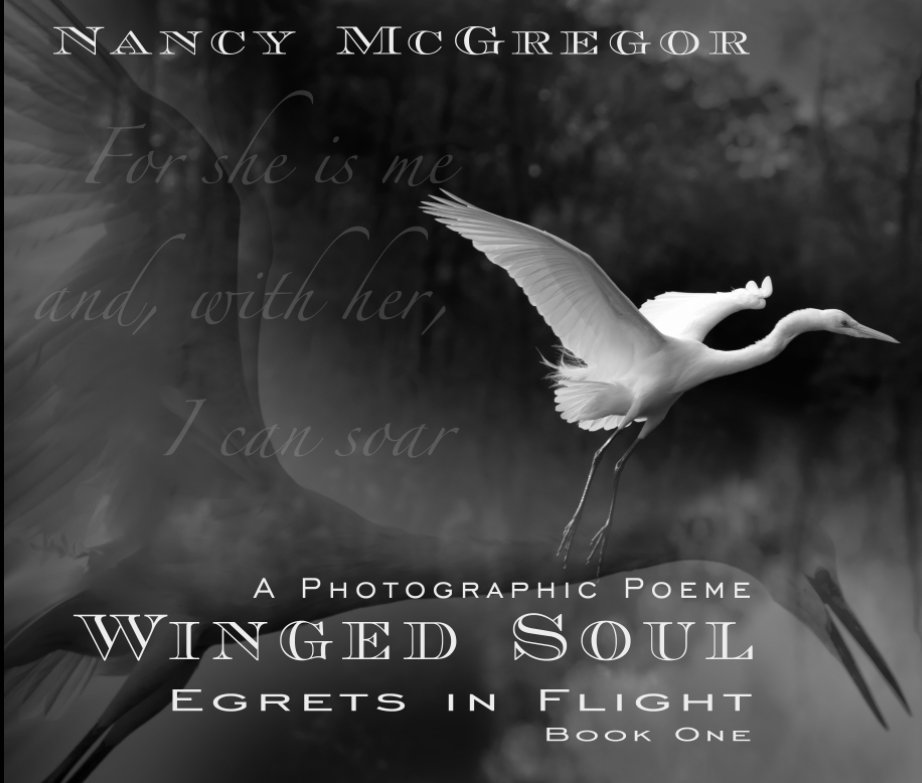 View Winged Soul  - Egrets in Flight (Hard Cover) by Nancy McGregor