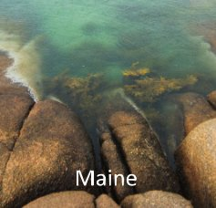 Maine 2014-2016 book cover