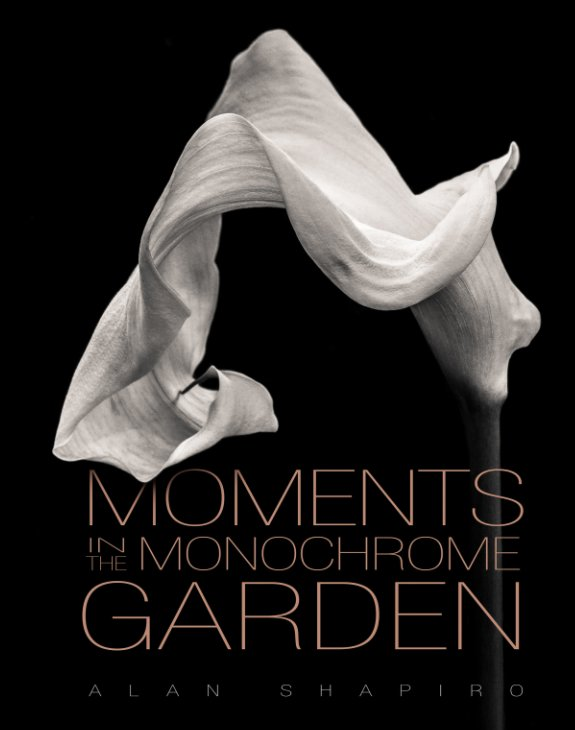 View Moments in the Monochrome Garden by Alan Shapiro