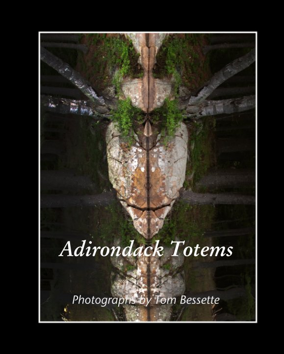 View Adirondack Totems by Photographs by Tom Bessette