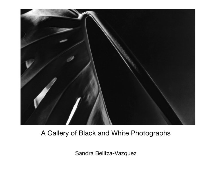 View A Gallery of Black and White Photographs by Sandra Belitza-Vazquez