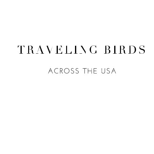 View TRAVELING BIRDS by Elo Durand