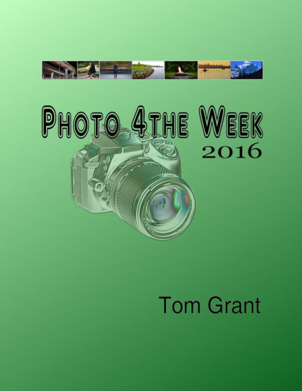 View Photo 4 The Week 2016 by Tom Grant