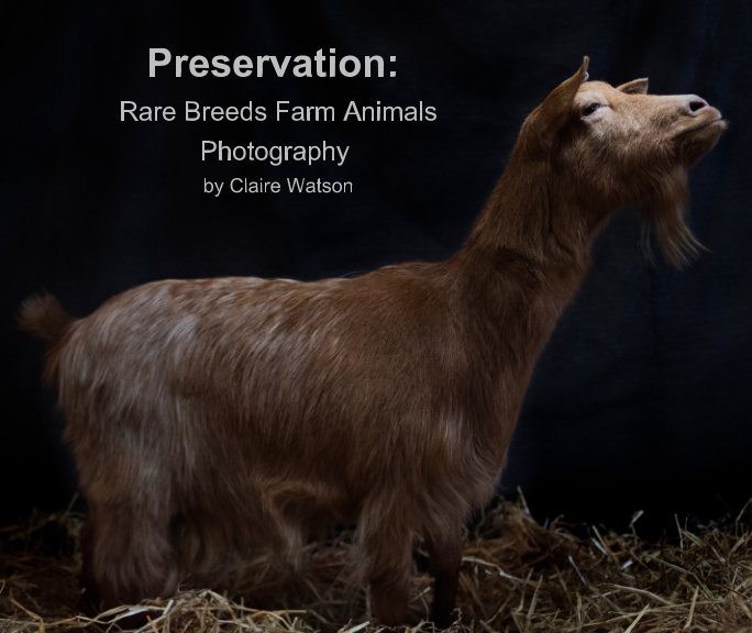 View Preservation: by Claire Watson