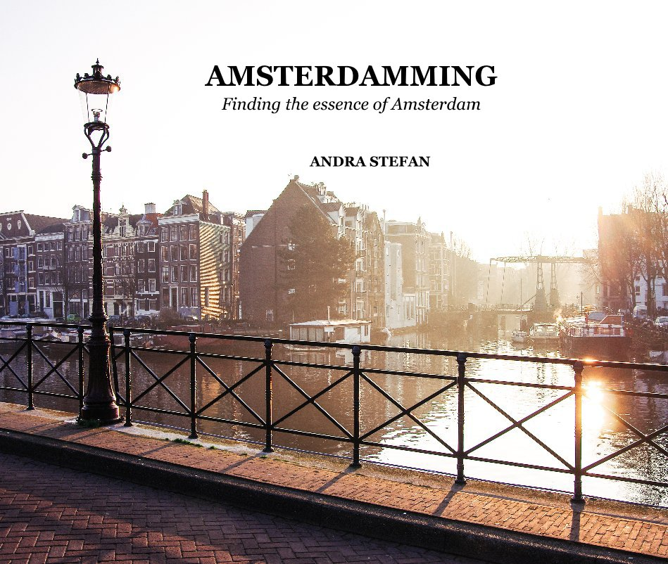 View Amsterdamming by Andra Stefan