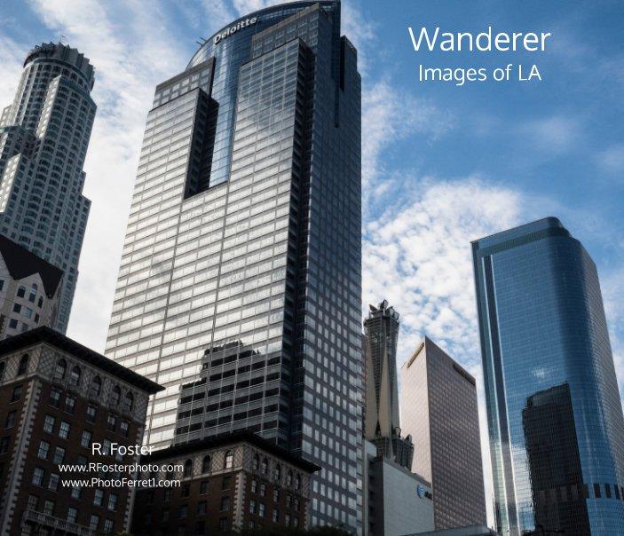 View Wanderer by Reginald Foster