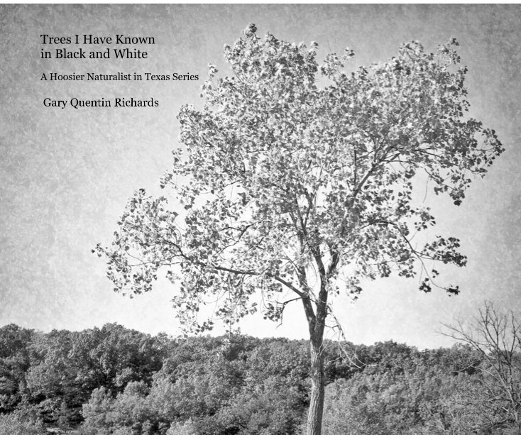 View Trees I Have Known in Black and White by Gary Quentin Richards