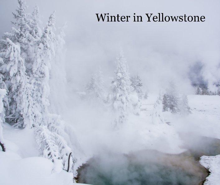 Ver Winter in Yellowstone por Patrick St Onge