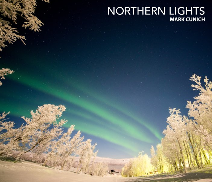 View Northern Lights by Mark Cunich