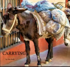 Carrying book cover