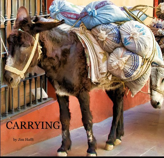 Ver Carrying por Jim Hafft