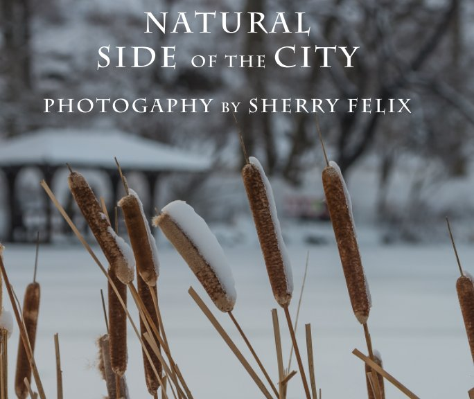 View Natural Side of the City [soft cover] by Sherry Felix