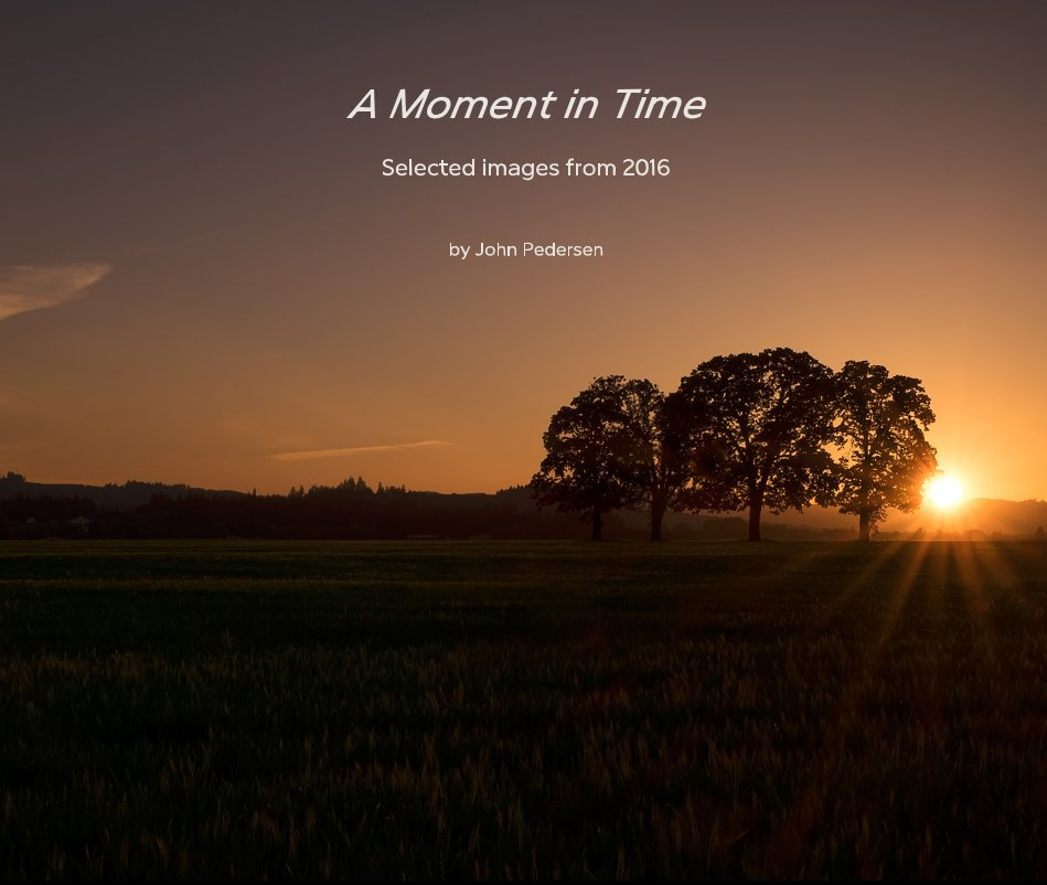 View A Moment in Time Selected images from 2016 by John Pedersen