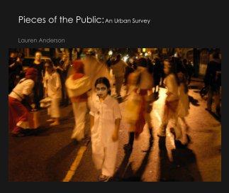 Pieces of the Public: An Urban Survey book cover