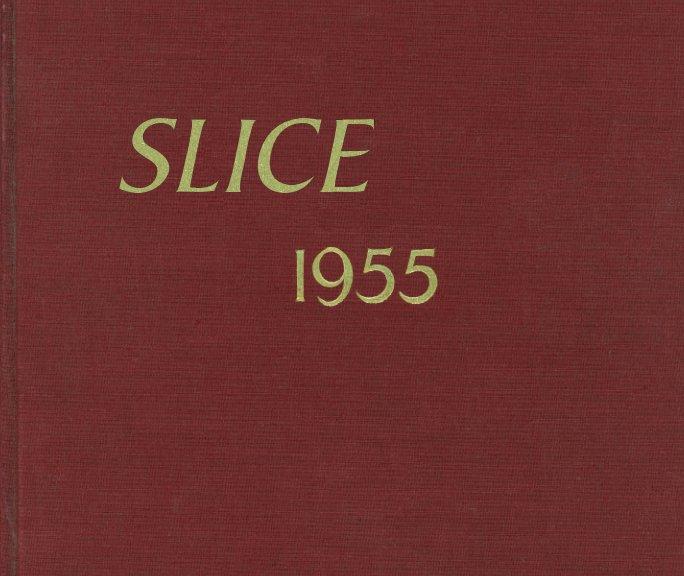 View Slice by Peter Sramek