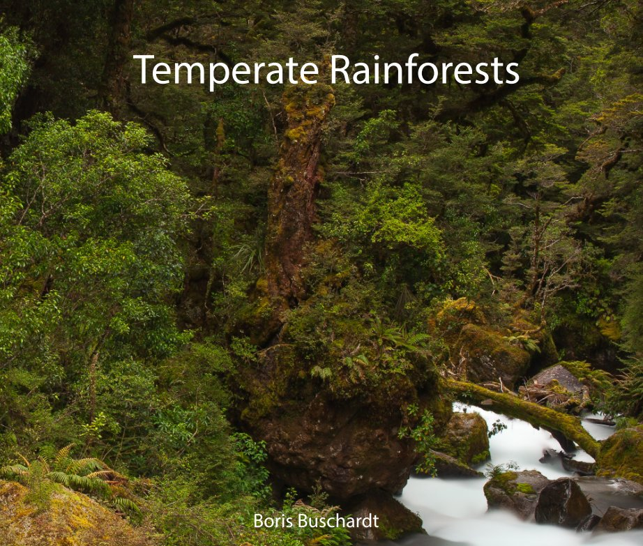 Temperate Rainforests nach Boris Buschardt anzeigen