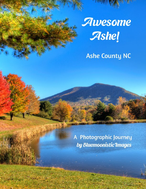 View Awesome Ashe by Dale R. Carlson, Becky B. Carlson