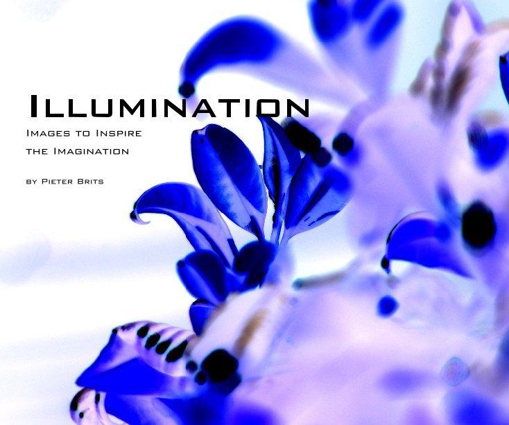 View Illumination by Pieter Brits
