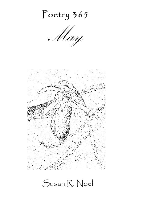 View Poetry 365 May by Susan R. Noel