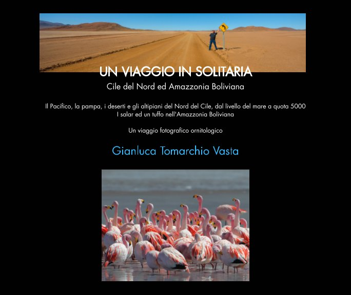 Visualizza Un viaggio in solitaria di Gianluca Tomarchio Vasta