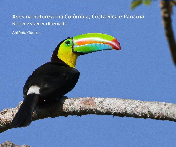 Ver Aves na natureza na Colômbia, Costa Rica e Panamá por António Guerra