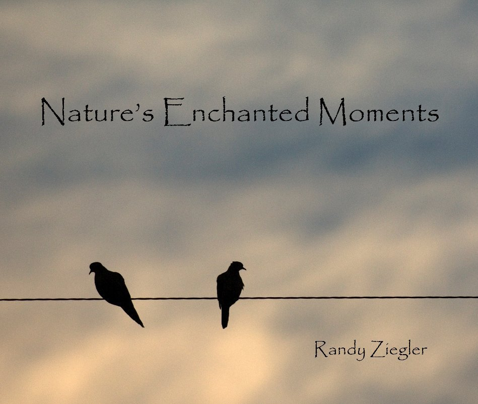 View Nature's Enchanted Moments by Randy Ziegler