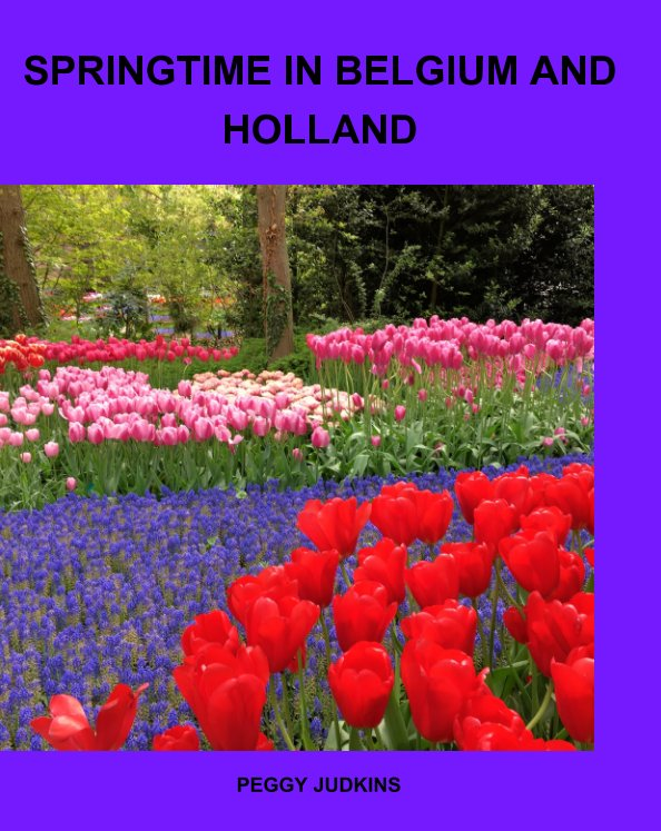 View Springtime in Holland and Belgium by Peggy Judkins