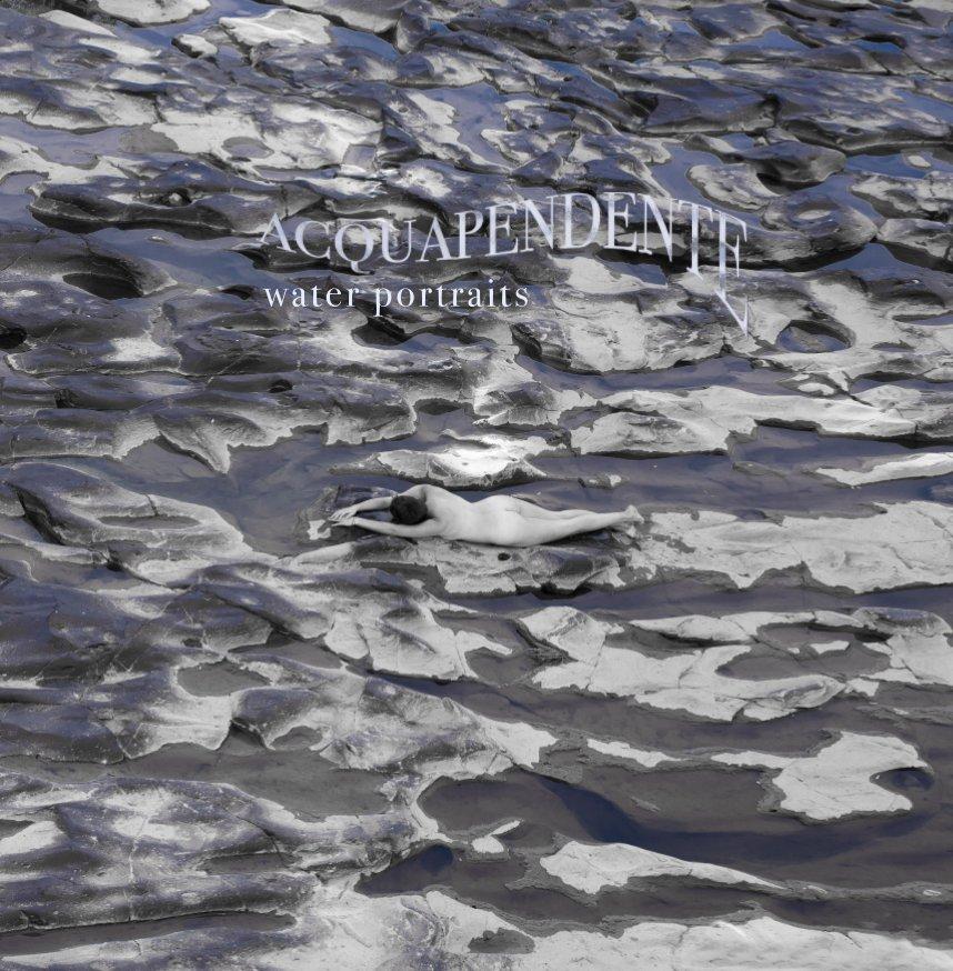 View Acquapendente by Patrick Richmond Nicholas