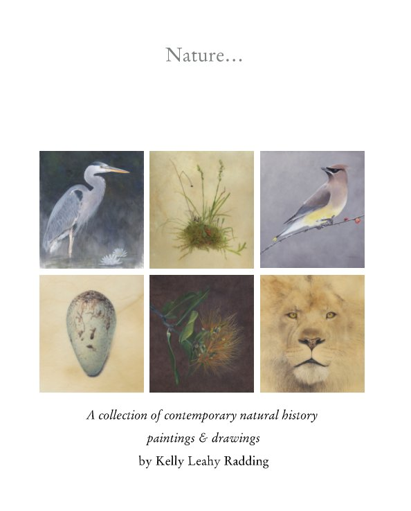 View Nature… A collection of contemporary natural history paintings and drawings by Kelly Leahy Radding by Kelly Leahy Radding