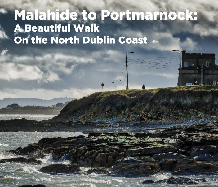 View Malahide to Portmarnock by Thomas Fitzgerald